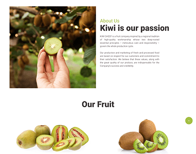 Landingpage for website kiwi
