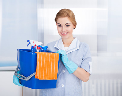 Mini Maid of Johnson County- House Cleaning Services