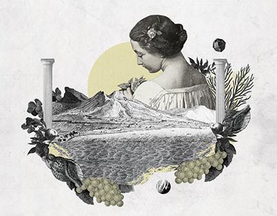 Il Grande Libro illustrato del Vino Italiano