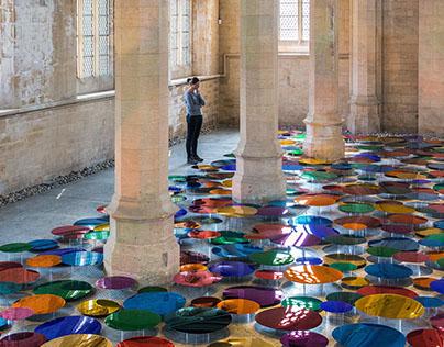 Our Colour Reflection