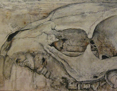 Mongoose Skull
