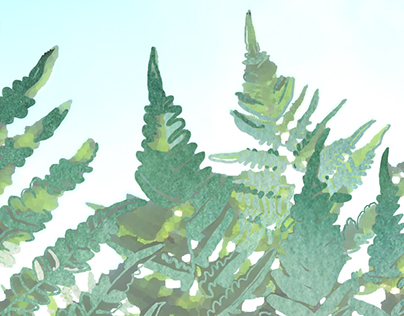 Иллюстрации ароматов для сайта журнала Seasons