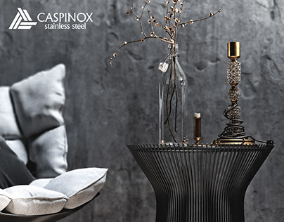CASPINOX_concept (project_with_Elmir_Babayev)