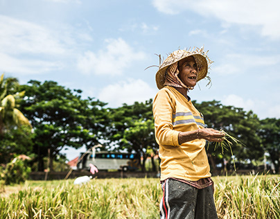 FACES BEHIND TOURISM - RICEFIELDS