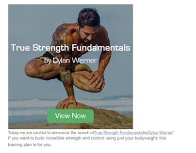 E-mail Marketing - True Strength Fundamentals