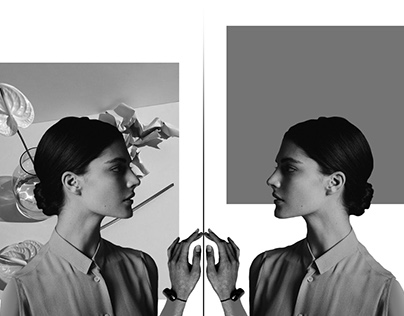 The Limits // Motion Collage