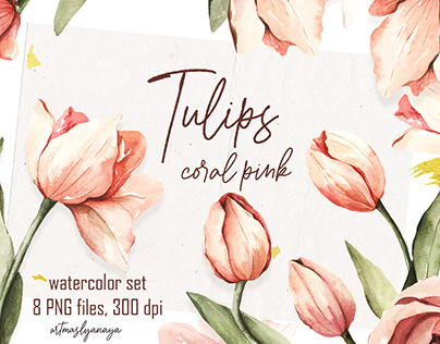 Watercolor Tulips Clipart. Hand painted spring flowers.