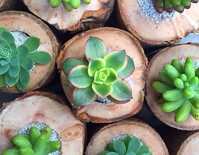 Diseño Botánico - Madera