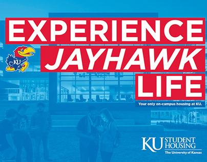 Experience Jayhawk Life tri-fold