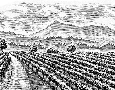 Rodney Strong Wine labels illustrated by Steven Noble