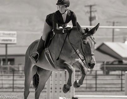 Hunter on a Mule
