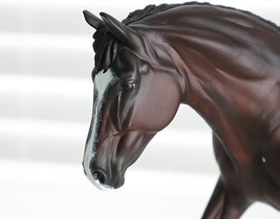 Frost Etched Studios-Equine Art Business