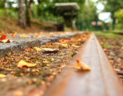 Track in different seasons