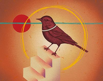Falsas Tragedias - Album Cover Art