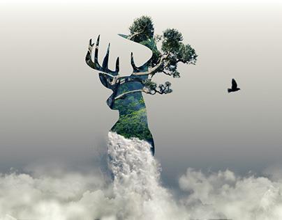 Deer | Animated Surreal