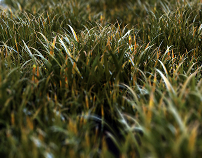 Realistic Grass v1