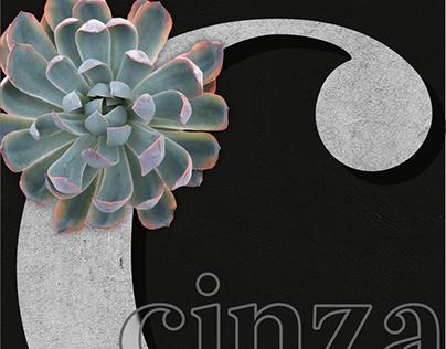 cinza - economia criativa