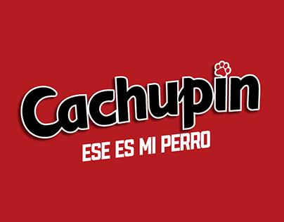 Cachupín 2018