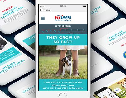 PetSmart Digital Design