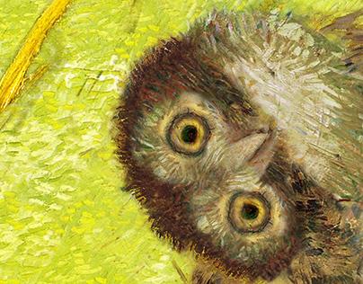 Vincent Owl