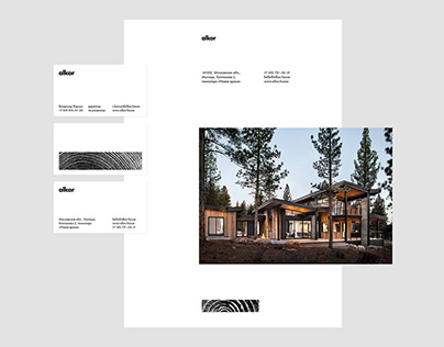 Identity for Alkor company