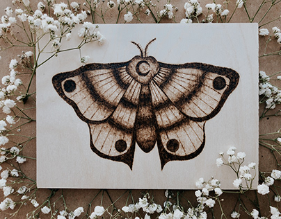 Wood Burning Projects Photos Videos Logos Illustrations And Branding On Behance