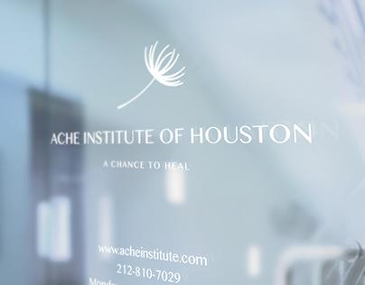 ACHE INSTITUTE OF HOUSTON