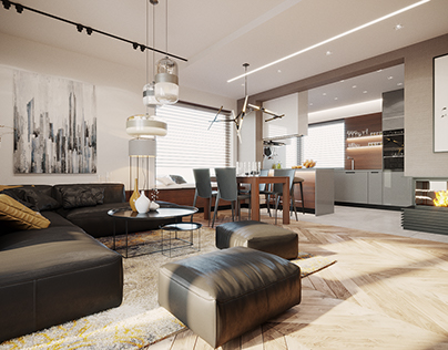 LIVING ROOM AND KITCHEN INTERIORS