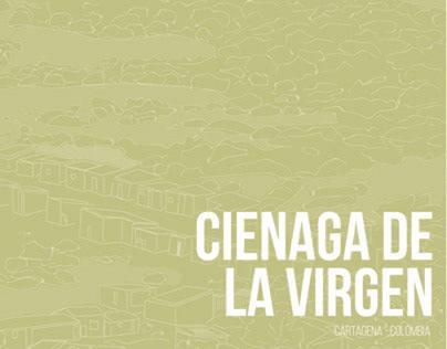 UI_Ciudad Informal_Libro Ciénaga de la Virgen_202010