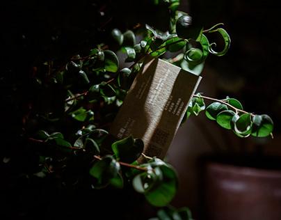 印刷案例 | 雙木林 TwinxForest:名片×酷卡×貼紙