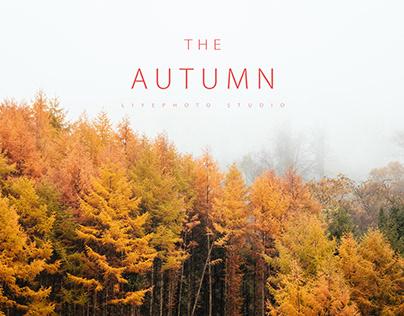 Autumn·SiChuan