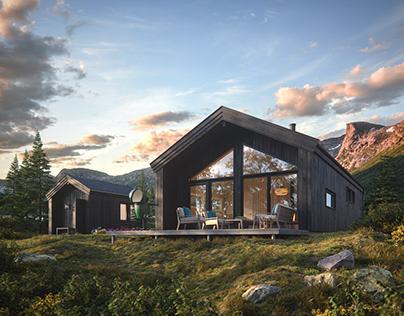 Scandinavian cabin houses