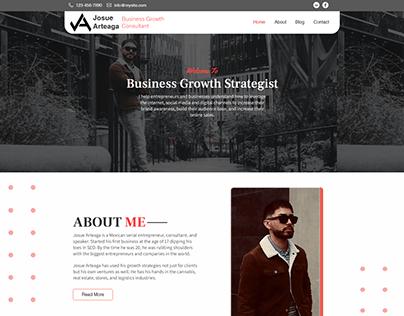Consultant Website Design