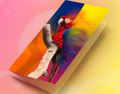 Mockup folder
