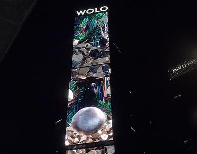 WOLO 2020