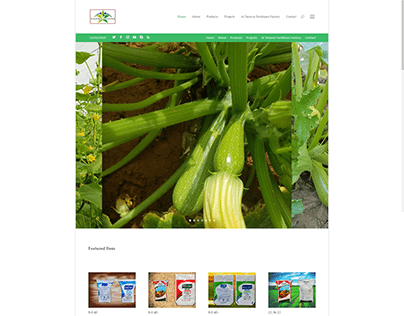 Website design, with identity and products