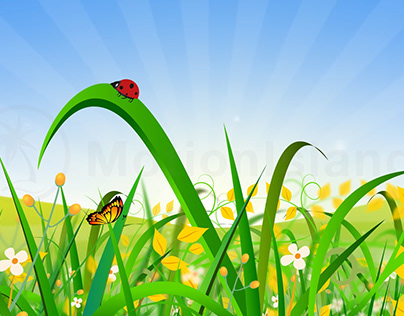 Landscape Field Animation with Ladybug and Butterfly
