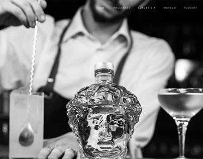Gin David Website