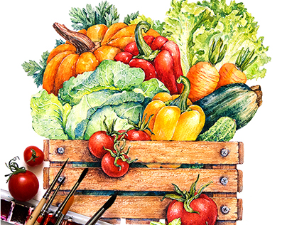 Vegetables and herbs / watercolor