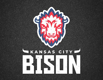 Kansas City Bison: NBA Team Concept