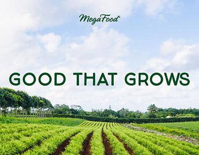 MegaFood - Rebrand