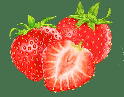 Strawberry - Illustration