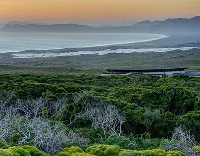 Content Strategist for 5* Grootbos Private Reserve