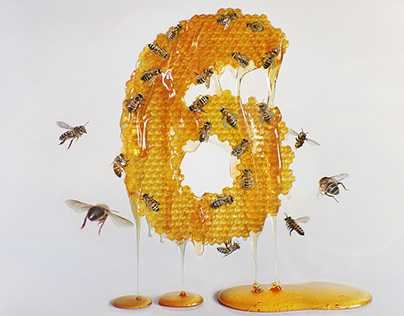Insects vs. Numbers