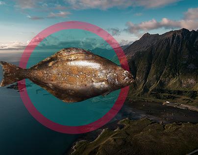 Landing for Norway Fishing