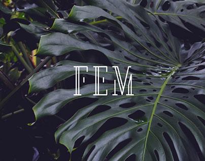 FEM Brand Design