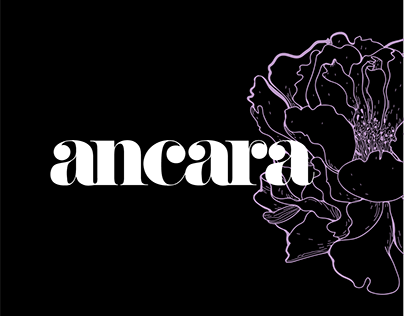 Ancara Design Brand Identity