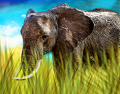 Digital Paintings, Animals