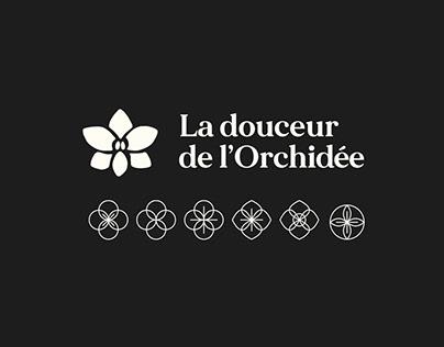 La douceur de l'orchidée