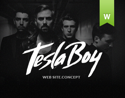 Tesla Boy - web site music group.Concept